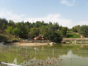 Jerusalem Botanical Gardens